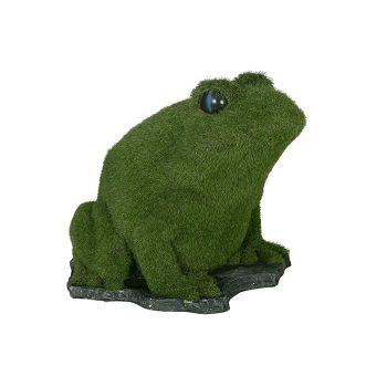 Great Bearded Frog